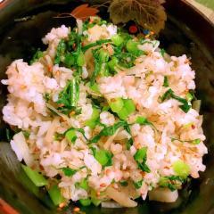 蕪菜と大根皮とがごめ昆布の柚子胡椒混ぜご飯