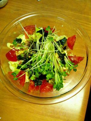 キムチと海苔の春キャベツサラダ