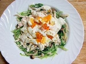 水菜+しめじ+蒸鶏+塩麹卵のサラダ