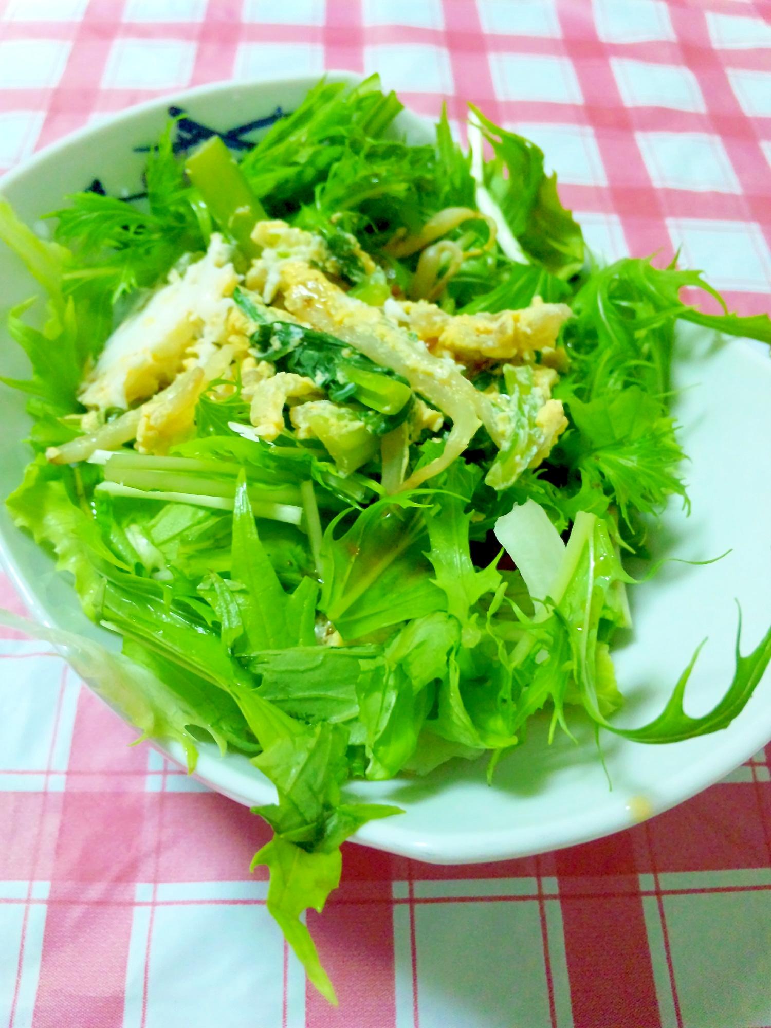 アレンジ★小松菜&水菜のアジアンサラダ