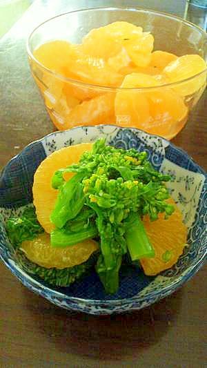 作り置きが美味しい!すっぱい柑橘類の蜂蜜お砂糖漬け