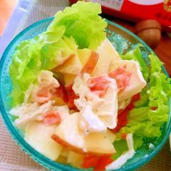 林檎とシェーブルチーズのサラダ