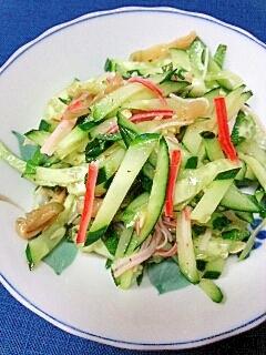 【キレイ応援朝食】胡瓜とザーサイの香味ごまサラダ♪