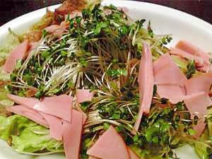 栄養満点スプラウトのサラダ