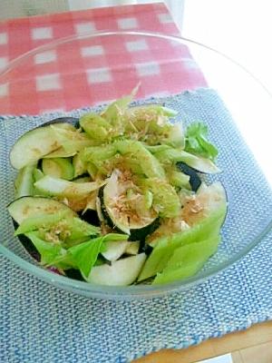 セロリとなすの、簡単サラダ