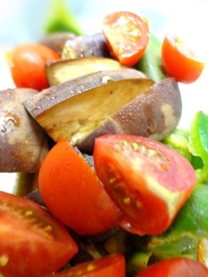簡単副菜☆茄子とピーマンとトマトのポン酢マリネ