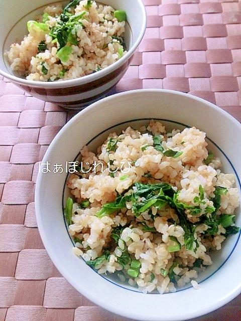 12. からし菜の漬物とごまの混ぜご飯
