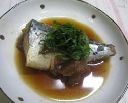 鯖のさっぱり梅風味煮
