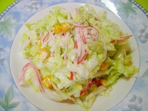 キャベツ コールスロー サラダ