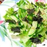 レタス、きゅうり、味付け海苔の和グリーンサラダ