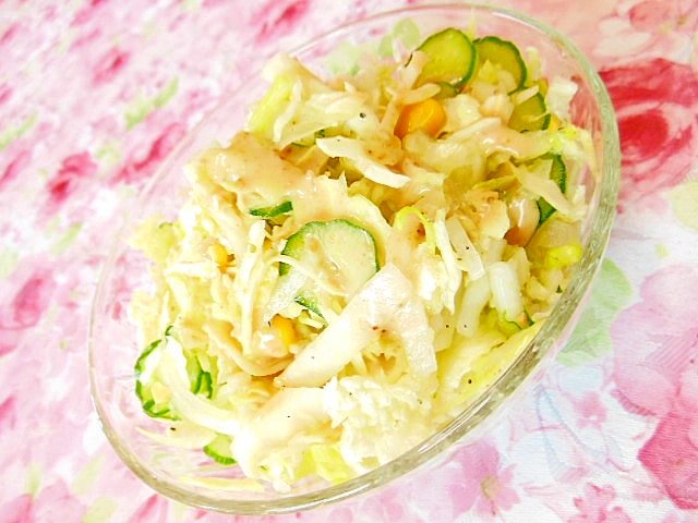 白菜と大根と胡瓜のスパイス・胡麻ドレサラダ