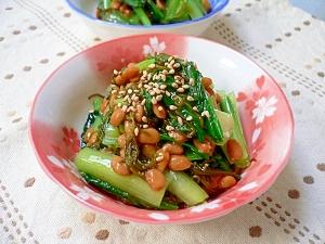 小松菜のめかぶ納豆和え