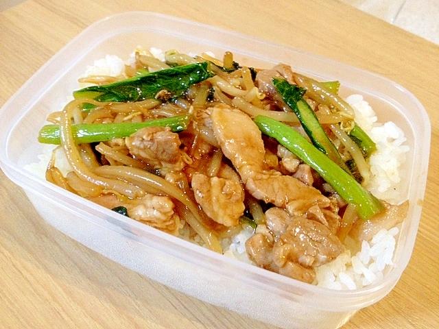 丼弁当〜小松菜と豚肉もやし炒め