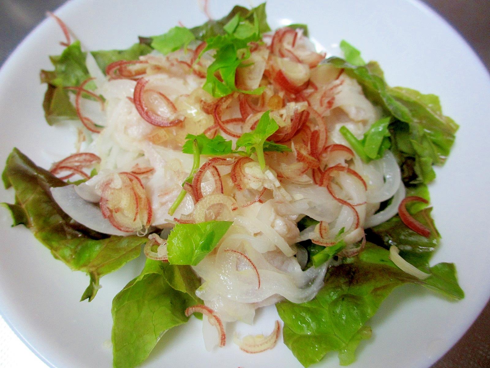 黒鯛と新玉ねぎのマリネミョウガ風味