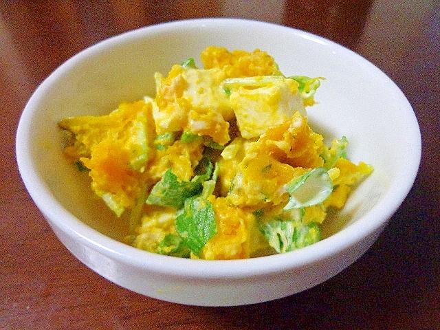 しゃきしゃき豆苗とチーズの南瓜サラダ