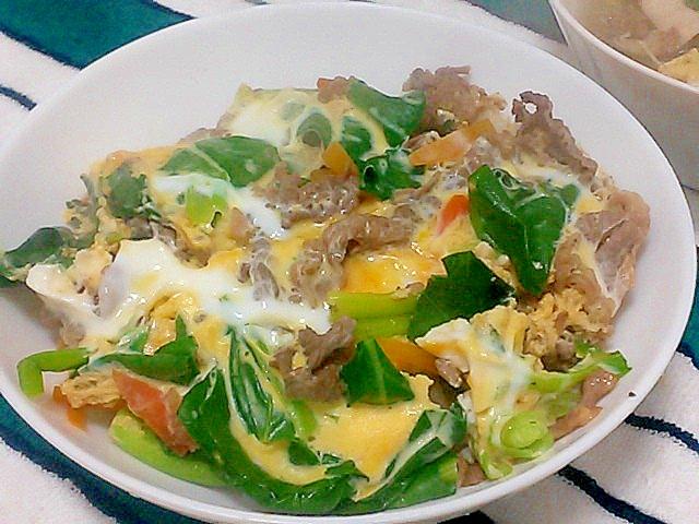 切り落とし肉で節約!小松菜と人参の卵とじ&丼
