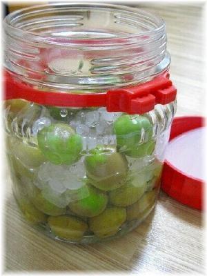 りんごのお酢で梅シロップ・梅ジュースに♪ レシピ・作り方 by ...