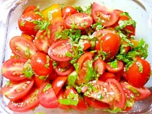 作り置きが便利。トマトとバジルのオリーブオイル漬け