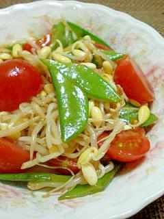 豆もやしと絹さや・トマトのバルサミコサラダ☆