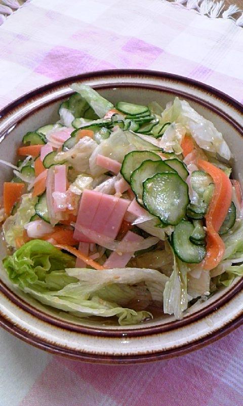 6. 新鮮生野菜のシャキシャキサラダ