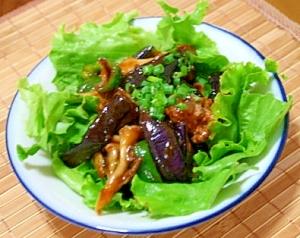 夏の夕食に♪食欲そそる緑レタス敷きのマーボーナス
