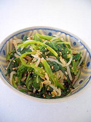 お弁当のおかずにぴったり!ほうれん草のもやし和え レシピ・作り方 by しまとも2721|楽天レシピ