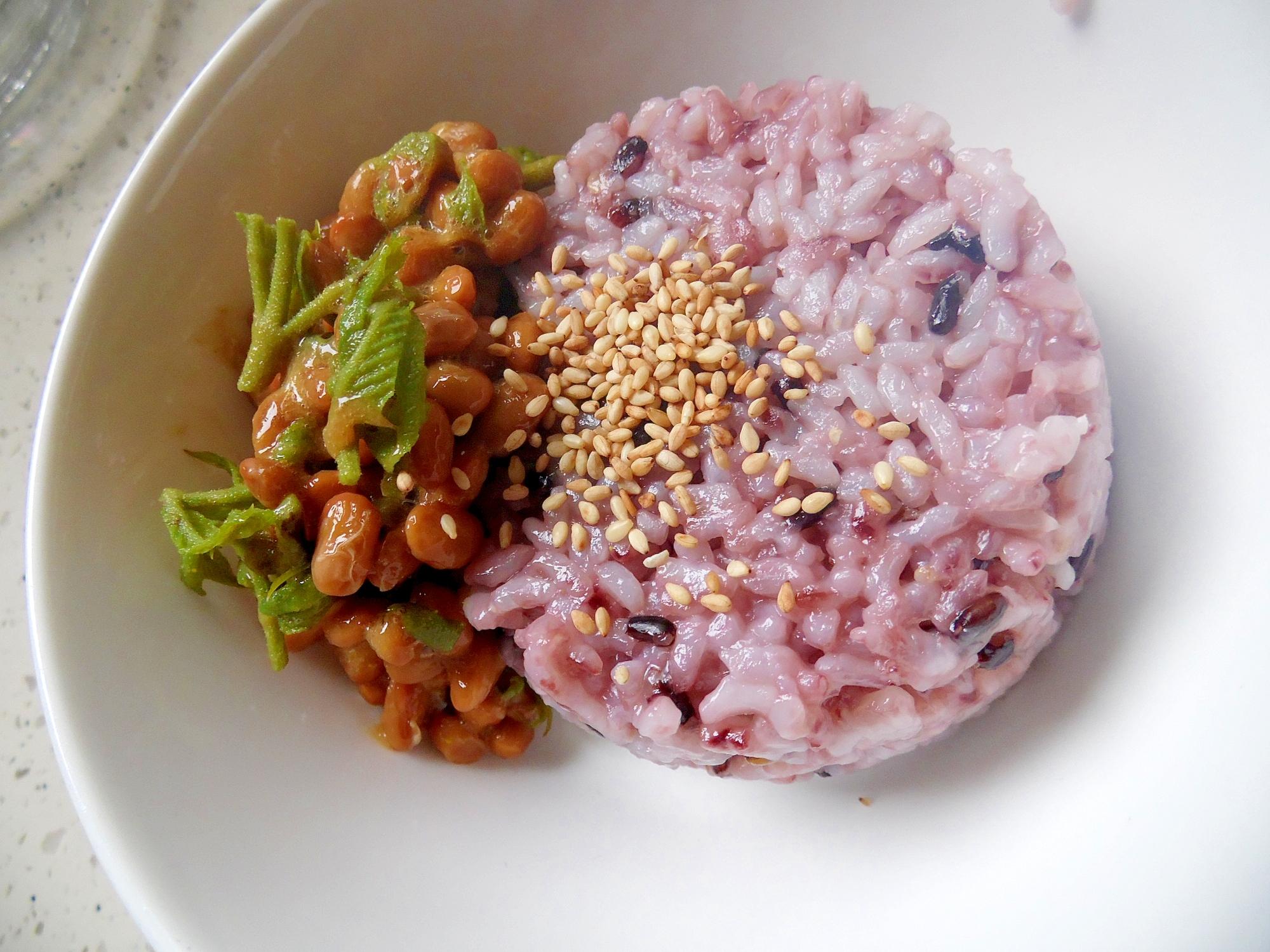 たらの芽風味の納豆ご飯
