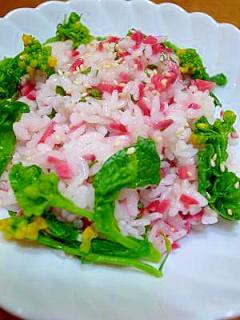 赤かぶ菜の花のピンク酢飯ごはん♪