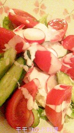 お野菜たっぷりフレッシュサラダ