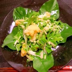 緑野菜とカリフラワーのレモンサラダ