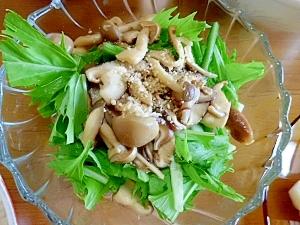 1皿★34kcal★塩分0.6g★水菜きのこサラダ