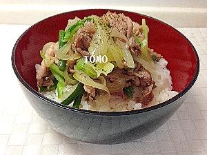 野菜たっぷりのスタミナ豚肉どんぶり