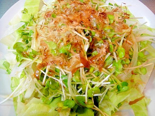 新玉ねぎとカイワレ大根のサラダ