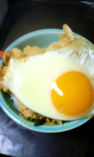 タンドリー豚丼