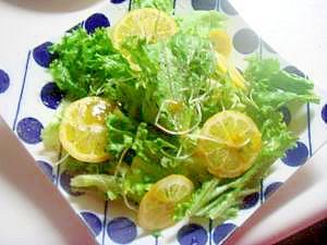 スプラウトとグリーンカールのサラダ