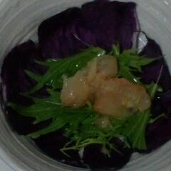 水菜とグレープフルーツサラダ