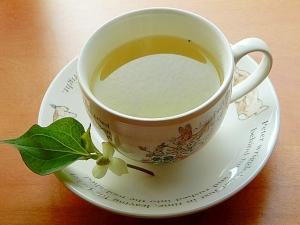 ドクダミ 茶 作り方