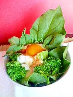 アボカドと卵のとろーりドレッシングサラダ