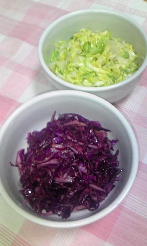 春キャベツ&紫キャベツdeコールスロー♪