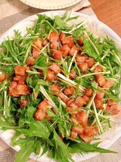 フライドチキンをリメイク☆ボリューム満点水菜サラダ