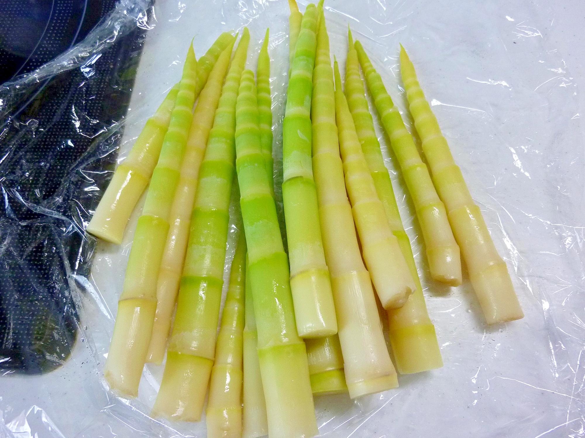 春の山菜♪ 笹たけのこの下処理方法