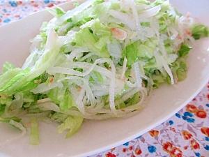 冬瓜とレタスのサラダ