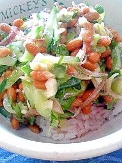 納豆の食べ方-キュウリしそミョウガ♪