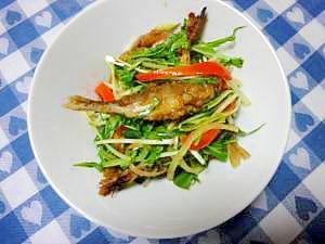 タレが美味しい~野菜たっぷり♪鯵の南蛮づけ