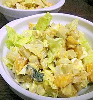地味な根菜サラダのおしゃレタスじたて