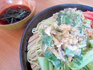 天ぷらサラダ冷やし中華