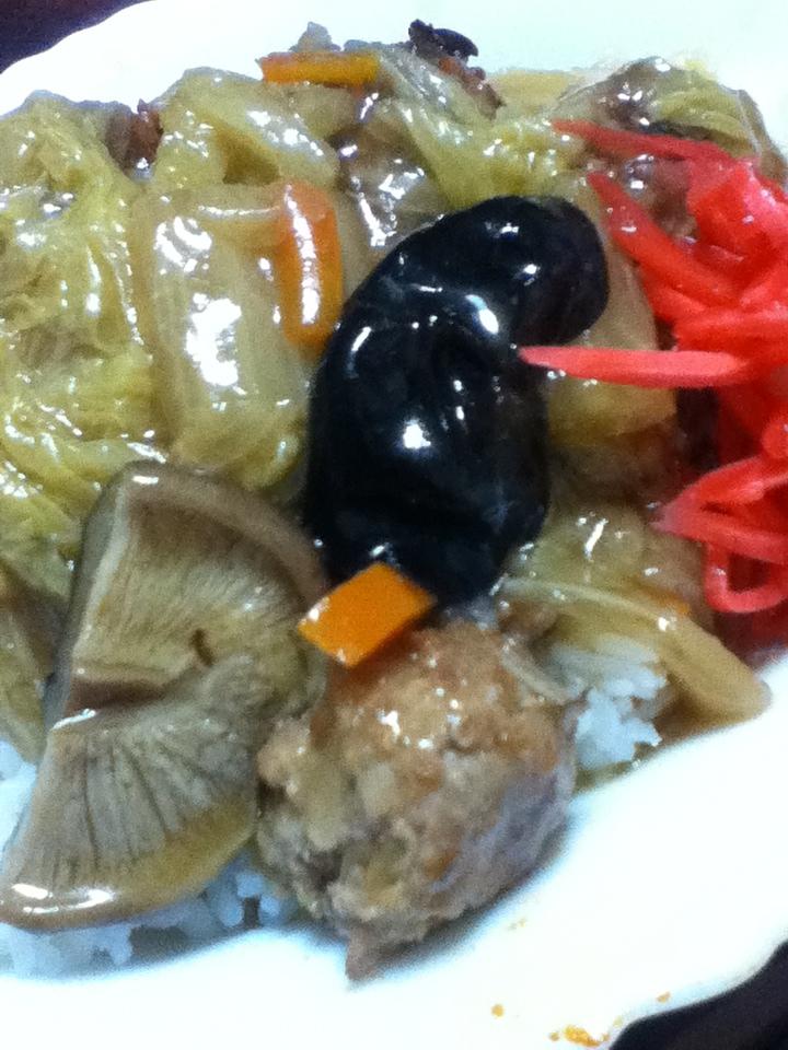 高野豆腐入り肉団子の中華丼