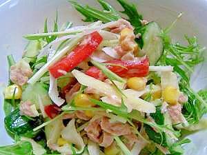 ダイエットレシピ 新生姜で作るあっさりサラダ