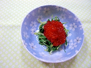 水菜わさび醤油和え筋子のせ