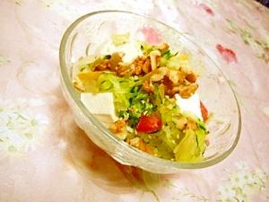 塩ダレdeキャベツと胡瓜とパプリカの豆腐サラダ